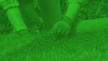 Utrzymanie Terenów Zielonych